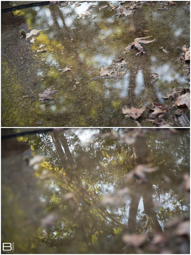 Nacogdoches photographer thoughts on perspective with images of a puddle reflecting the trees and sky above