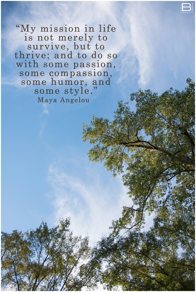 Nacogdoches photographer image of sunlit treetops, blue sky and white clouds with quote by Maya Angelou